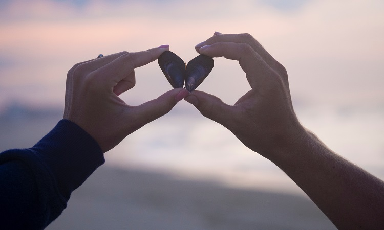 Love Marriage Specialist in Toronto